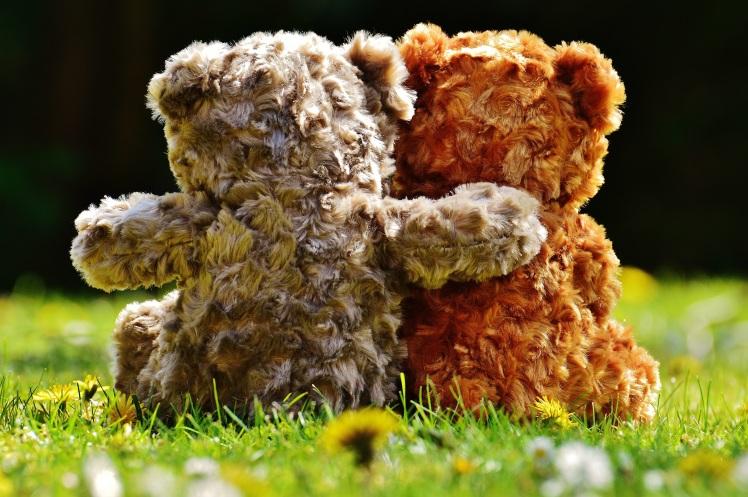 sweet-leaf-cute-bear-love-autumn-630183-pxhere.com.jpg